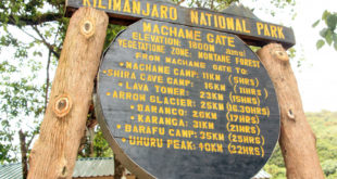 Kilimanjaro Machame Route Gate
