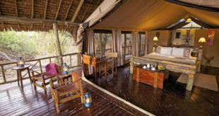 Katavi Wildlife Camp ★★★★