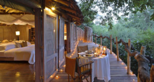 Lake Manyara Tree Lodge ★★★★★