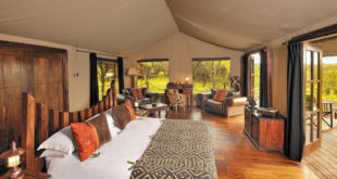 Serengeti Migration Camp ★★★★★